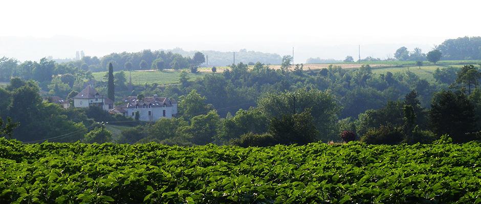 La Grange au Bois, vue arrière